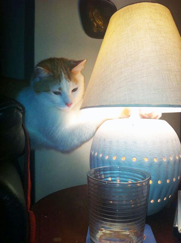gece-lambasındaki-sıcaklık